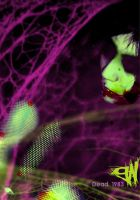 Freakland by Holle