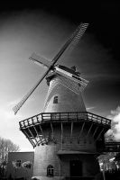 .:.:.Wind Mill.:.:. by Ailedda