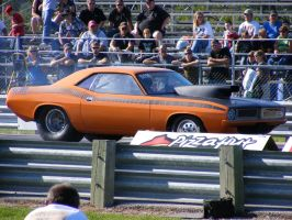 508 CUDA by colts4us