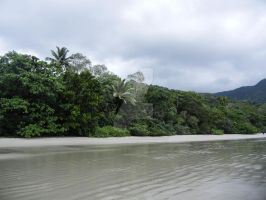 Cape Tribulation by TawnsterMonster