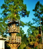 Our Treehouse Built by My Husband {Photo 1} by Empress-XZarrethTKon