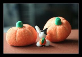 :: Witch Pumpkin Bunny :: by Shiritsu