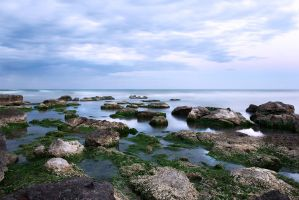 Autumn at the Black Sea by just4fun31