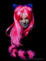 Cheshire 5 by Mistress-Zelda