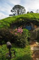 Smial in Hobbiton 03 by vigshane
