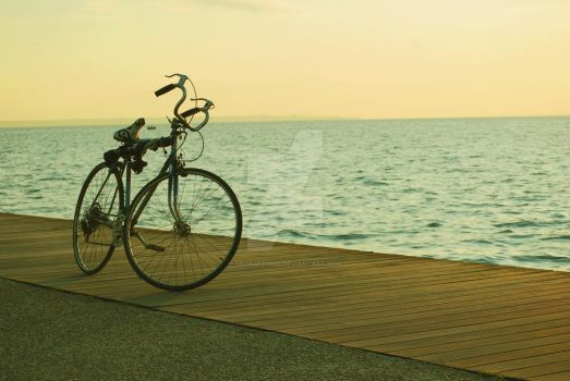 the bicycle by georgezondi