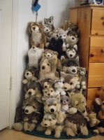 Most of my wolf plushie collection! by ShadoweonCollections