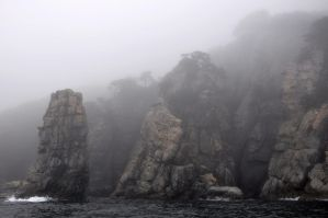 fog by mariall