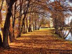 Autumn path 4 by FrantisekSpurny