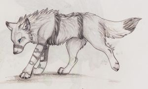Banded by Lost-Wolf-Soul