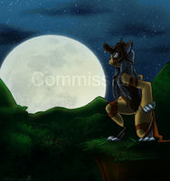 Commission: Into The Night by Fly-Free12
