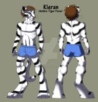 Kieran Anthro Tiger Form by jujukittychick