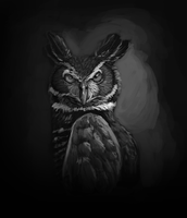 Owl Value Study by Moondoggiee