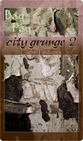 City Grunge 2 Pack by Baq-Stock