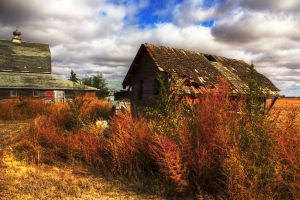 Old Farm by MikeDaBadger