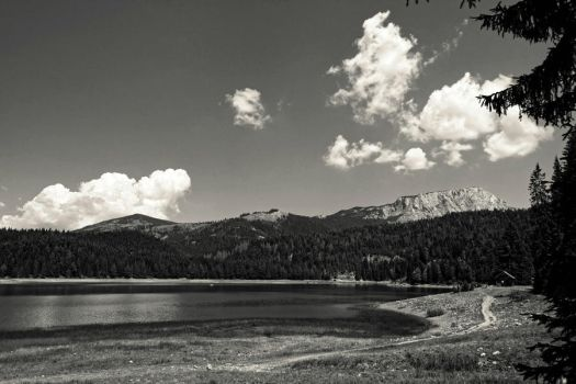 Paradise Without Colours by akki64
