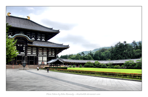 Eastern Great Temple - Nara ll by rikachu426