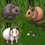 Teeny Tiny Field Mouse Avatar (Ports Included) by AnScathMarcach