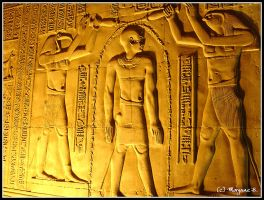 egypt - in kom ombo temple by moem-photography