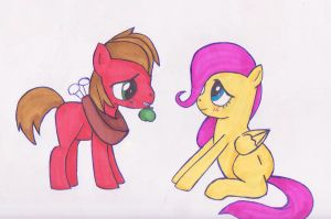 Fluttershy and Macintosh by ChaosTheDawn