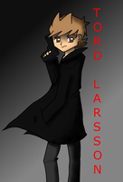 Tord Larsson by amythystanime
