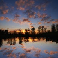 reflection by NicolasM