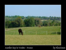 another day in Vendee by planzman