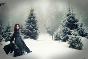 A winters day by Mocris