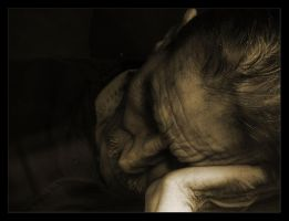 Duerme by yelen