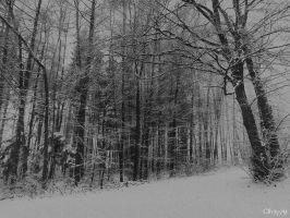 Philosophy Of Winter by Weissglut