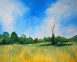 Poppy Field Acrylic 4 by mr-macd