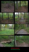 Woods Pack by blacksilence-stock