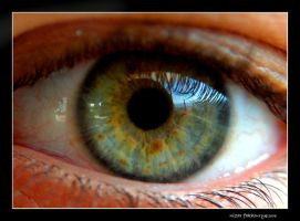 eye view by naz1
