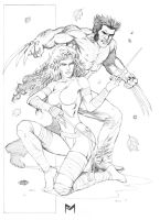 Wolverine and Electra by fernandomerlo