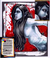 The Undying Sketch Card by dsilvabarred