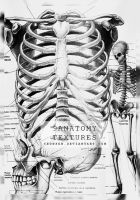 9Anatomy textures by Yeonseb