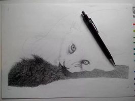 WIP - Baby Lion by Faelenn
