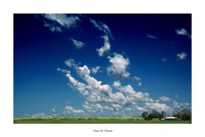 Cane and Clouds by m-Tuffy