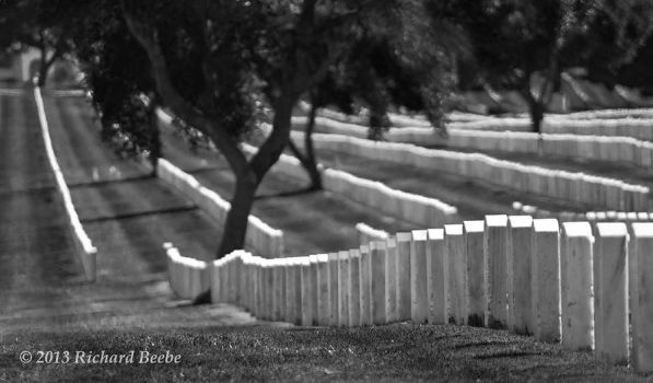 RB 08-26-2011 008bw GGNatlCemetery by rbeebephoto