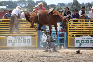 Taupo Rodeo 134 by Sooty-Bunnie