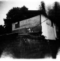 Cat on the roof by andre-supersampler