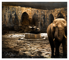 Elephant Walk by nine9nine9