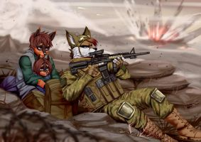 Battlefield by playfurry