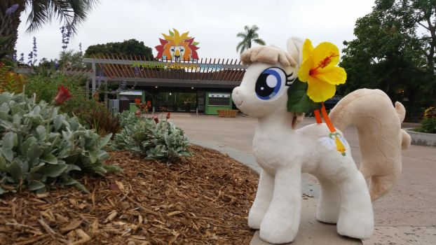 Sunny Days at Pacific PonyCon w/ MissionBelle Pt24 by PacificPonyCon