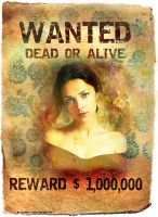 Wanted by Alosha-9
