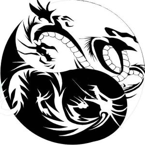"The image ""http://th04.deviantart.net/fs40/300W/f/2009/042/b/f/dragon_yin_yang_tribal_tattoo_by_xisangelraine.jpg"" cannot be displayed, because it contains errors."