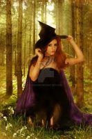 The Sweet Witch by zoozee