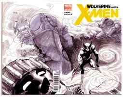Wolverine Blank Cover by kevinesque