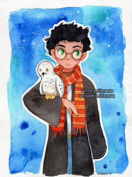 Harry Potter by Hikasawr