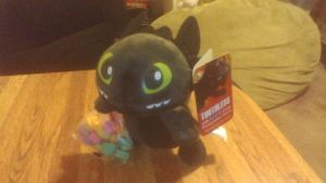 HTTYD Toothless Valentine's Day Plush by PokeLoveroftheWorld
